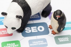 SEO penalties and updates