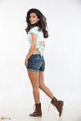 Disha Pandey Actress Stills-thumbnail-7