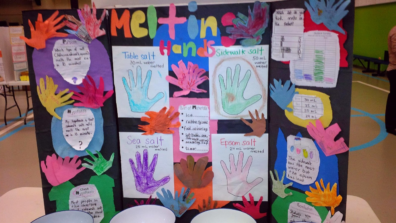 IMG 20141127 102242 edit - Kindergarten Science Fair Project