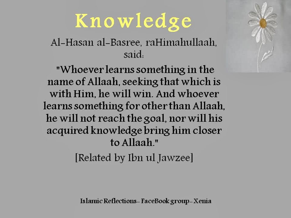 Readers must be thinking what is the point to be excited about islamic quote. Islam For Everyone Islamic Quotes About Education