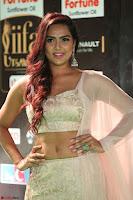 Prajna Actress in backless Cream Choli and transparent saree at IIFA Utsavam Awards 2017 0072.JPG