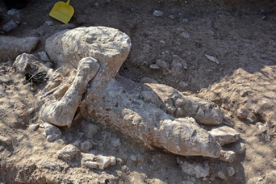 Sardinian archaeologists find Bronze Age 'giant'