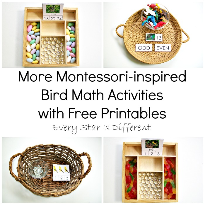 More Montessori-inspired Bird Math Activities with Free Printables