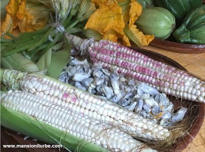 Delicias de la Cocina Prehispánica
