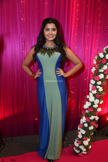 Anupama Parameswaran in lovely shaded gown ~  Exclusive 37.JPG