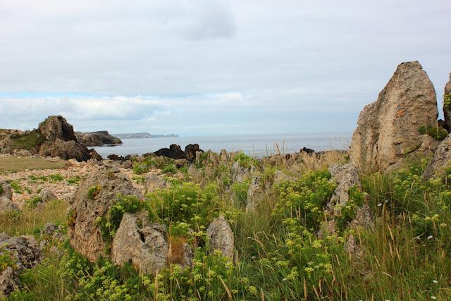 wybrzeże między przylądkiem Cabo Mayor w Santander a miejscowością La Maruca, skały nad zielenią łąki przy szlaku turystycznym, w tle ocean i błękitniejące w oddali klify
