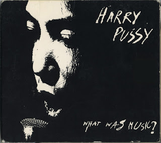 Harry Pussy, What Was Music?