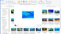 Anteprima dei file in Windows per immagini, pdf, musica, documenti ecc.