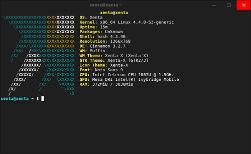 Tampilan Terminal Xenta OS dan Informasi