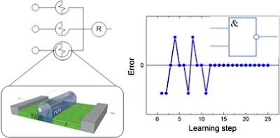 Polymer memristor used as basis for a perceptron