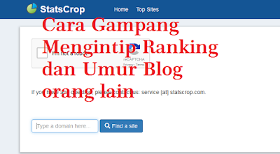 Cara Gampang Mengetahui Ranking dan Umur Domain Blog / Website