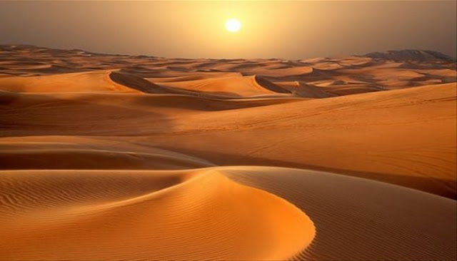 Η μοναξιά της ερήμου