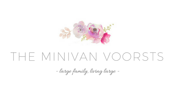the minivan voorsts.