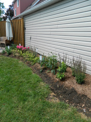 Dorset Park Scarborough Toronto back yard garden makeover after Paul Jung Gardening Services