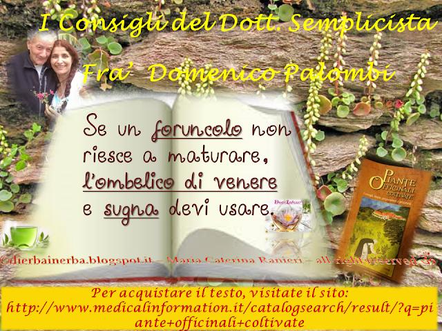 Foruncoli e Ombelico di Venere - I Consigli del Dottor Semplicista©