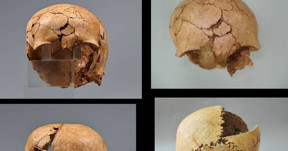 Evidence of ritual human sacrifice in the Mycenaean palace of Kydonia, Crete