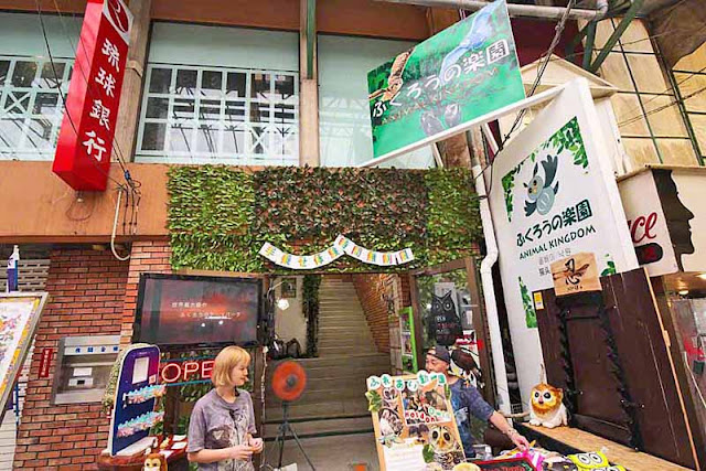 alley, animals, birds, Okinawa, animals, zoo