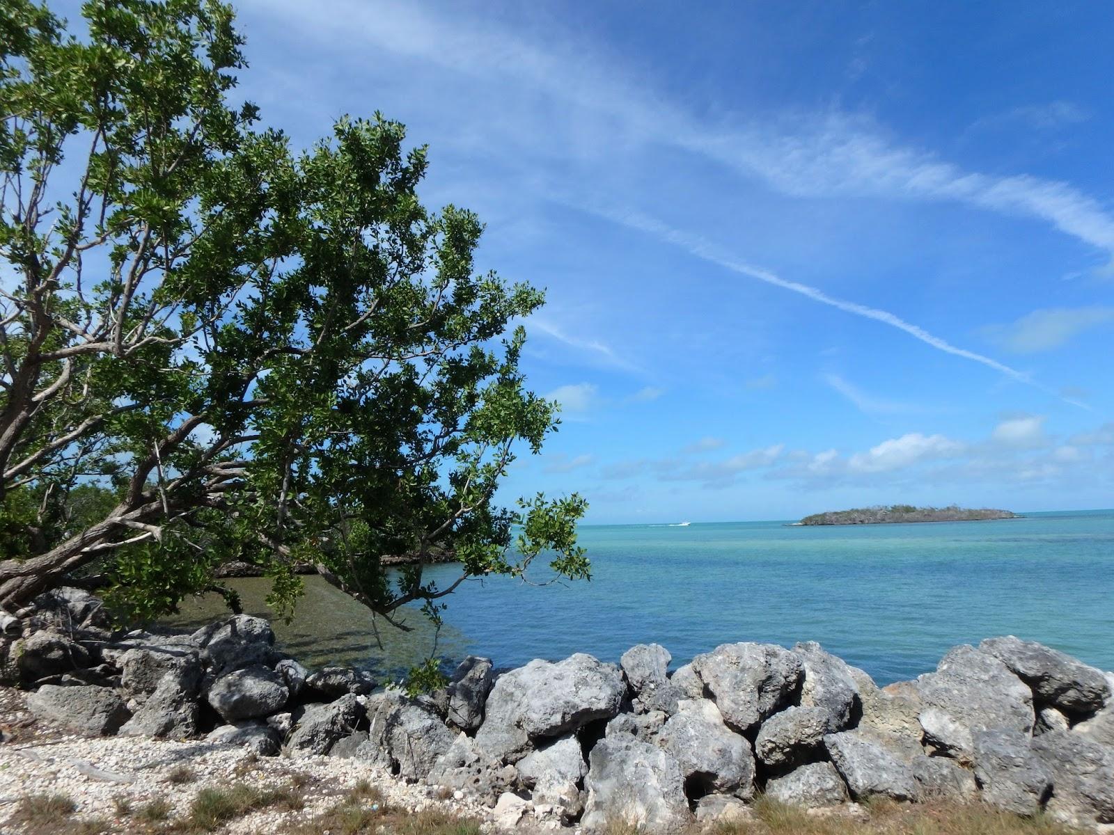 Pink Sand Beach Florida Keys The Best Beaches In World