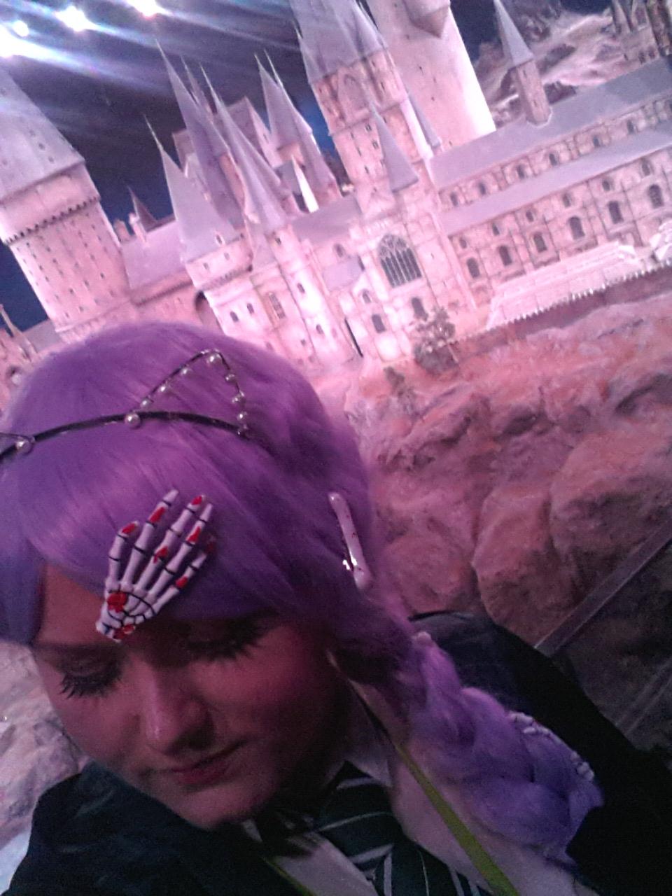 Scale model Hogwarts castle