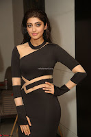 Pranitha Subhash in a skin tight backless brown gown at 64th Jio Filmfare Awards South ~  Exclusive 175.JPG