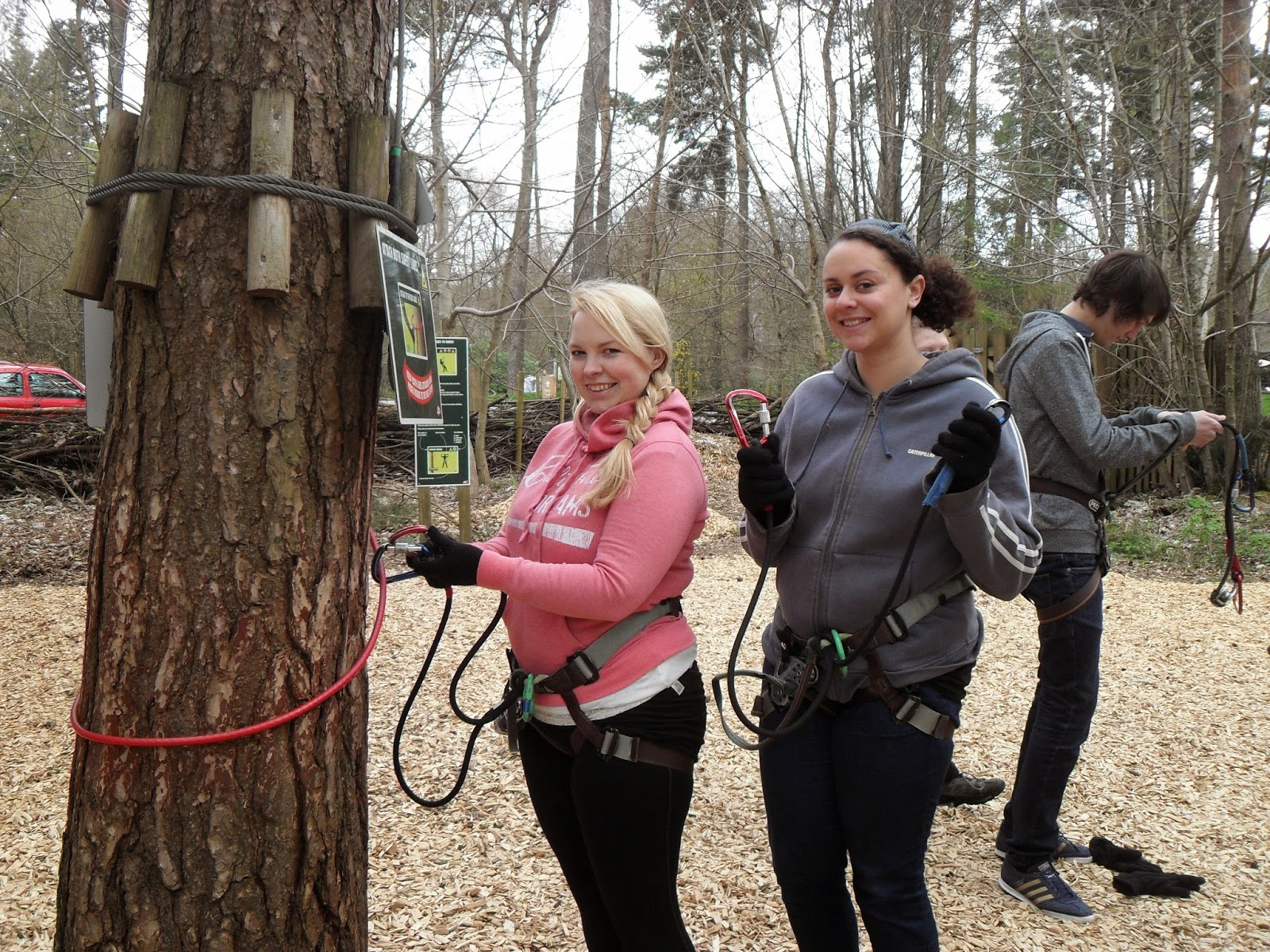 Go Ape, Wendover Woods, Adventure, Family Fun