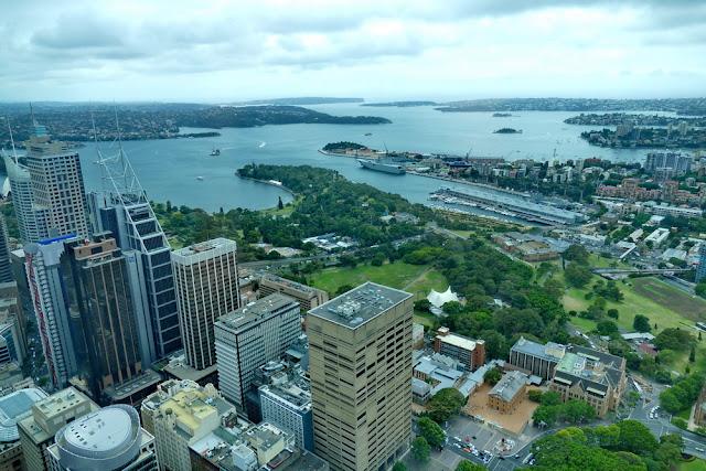 Aussicht, Fernsehturm, Sydney, Australien, Botanischer Garten, Stadt