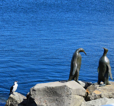 Penguin sculptures and a cormorant in Hobart Tasmania