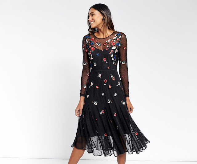 embroidered dress oasis