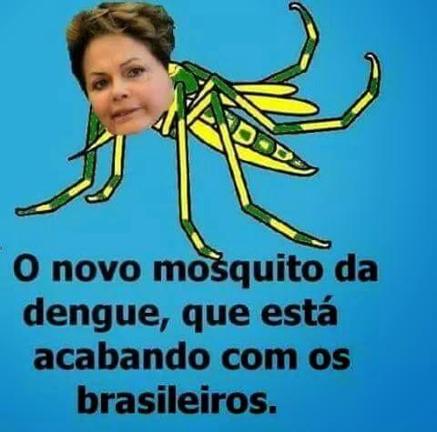 Governo Federal Publica Decreto De Combate A Dengue Sociedade Ativa