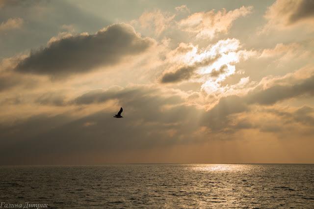 Черное море закат