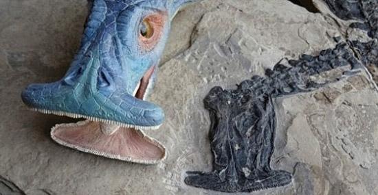 Réptil pré-histórico bizarro com focinho 'alienígena' intriga cientistas - Atopodentatus unicus - Capa