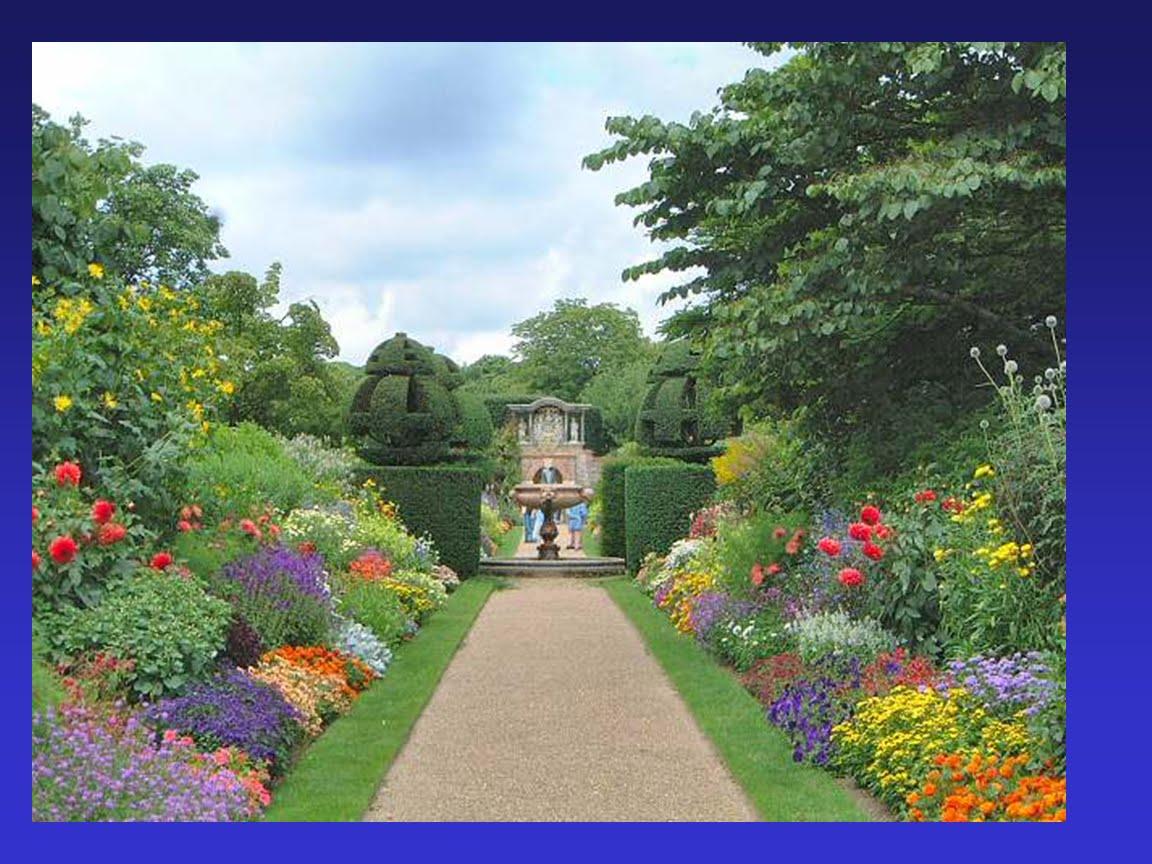 El espacio de abuela hortelia for Jardines con arboles y arbustos