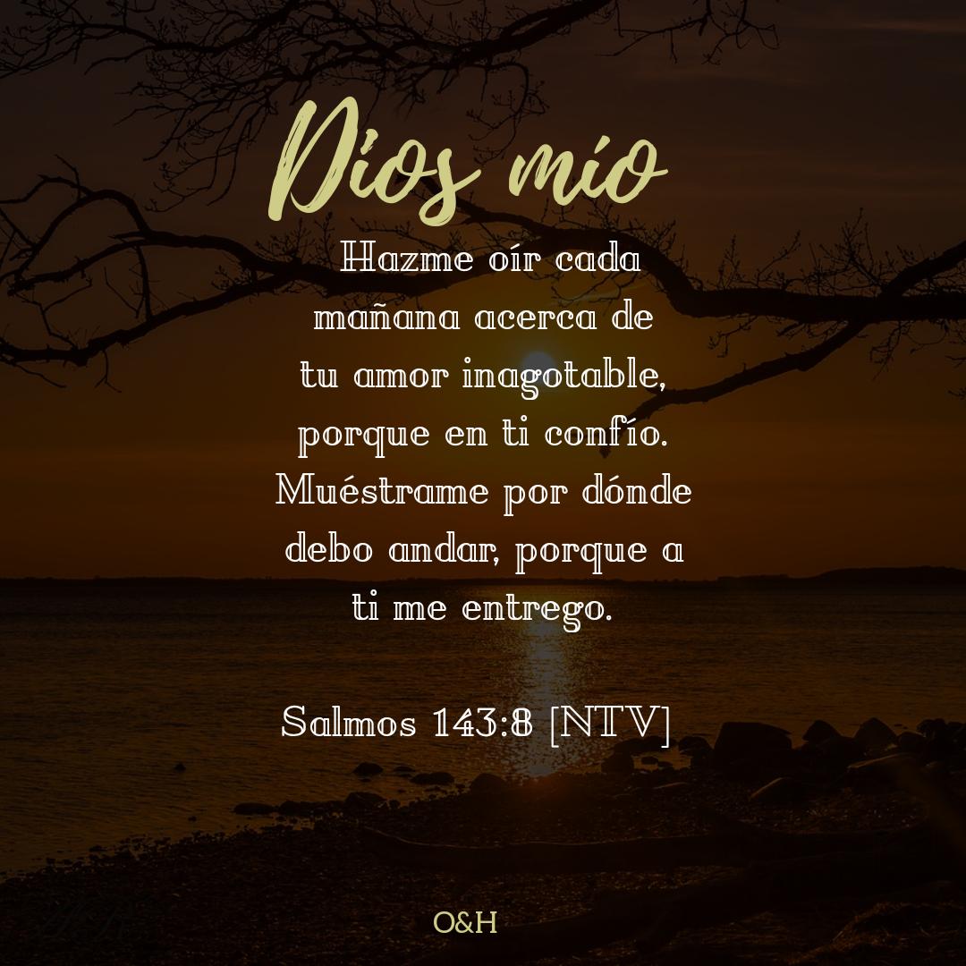 Imágenes Con Frases Bíblicas Oración Para La Mañana