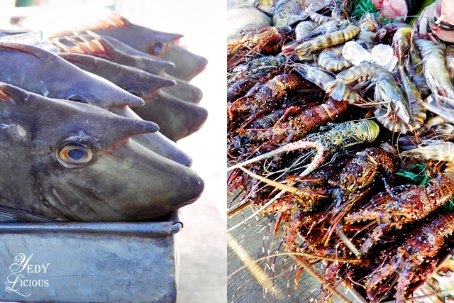Exotic Fish and Lobsters at City Baywalk Park Best Restaurants in Puerto Princesa Palawan Philippines YedyLicious Manila Food and Travel Blog