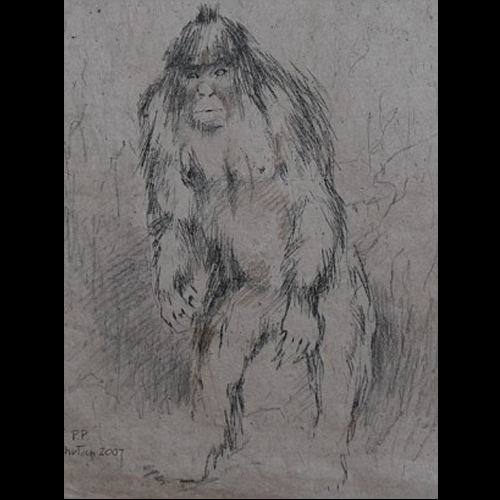 Bigfoot News | Bigfoot Lunch Club: Russia Announces DNA Test