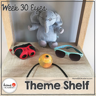 https://www.teacherspayteachers.com/Product/Sense-of-Sight-Preschool-Unit-Printables-for-Preschool-PreK-Homeschool-PreK-3809658