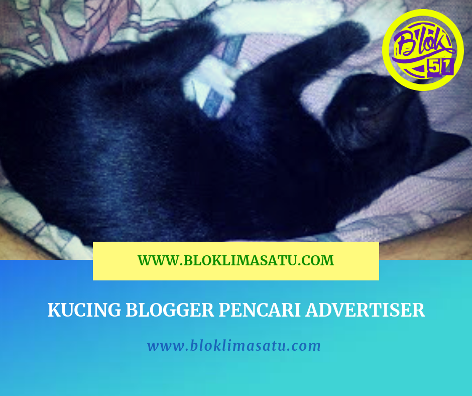 Kucing Blogger Pencari Advertiser
