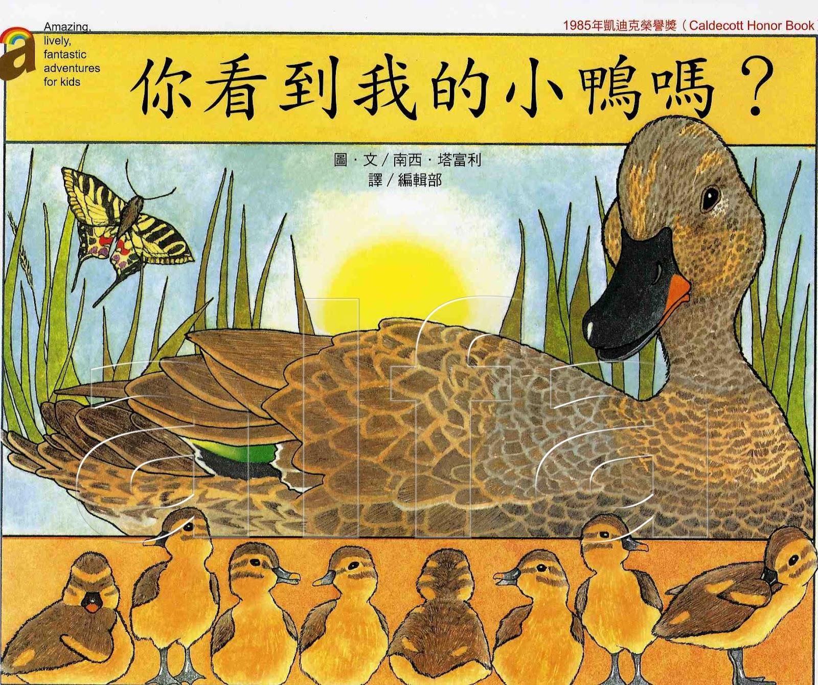 Alfa繪本童書迷: 你看到我的小鴨嗎?