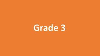 Prostatomegaly Grade 3
