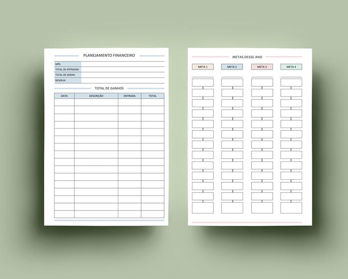 Planner Clean 2019 - Insert financeiro
