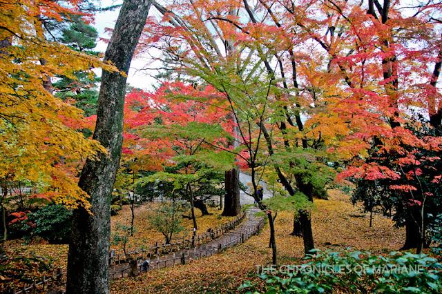kanazawa autumn