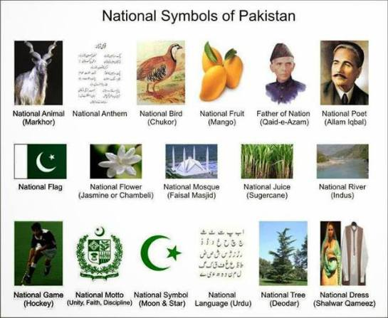 List Of National Things Of Pakistan Animal Bird Colour Day Fish