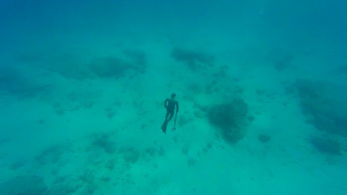 spearfishing playa del carmen