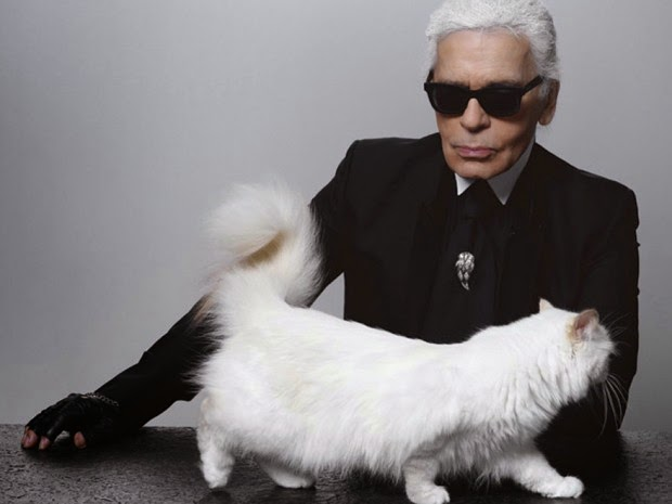 Karl Lagerfelds Cat Choupette Made 3 Million Last Year The Front