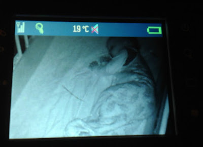 toddler asleep in a cot on a monitor