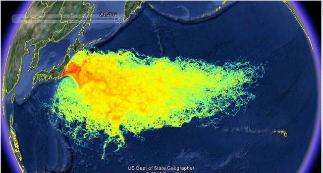 Fukushima este responsabila pentru contaminare