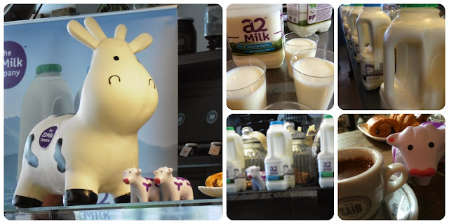 The a2 milk company helps milk intolerant people
