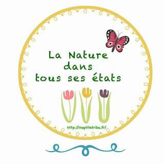 http://maptitetribu.fr/nature-tous-etats-rdvnature/