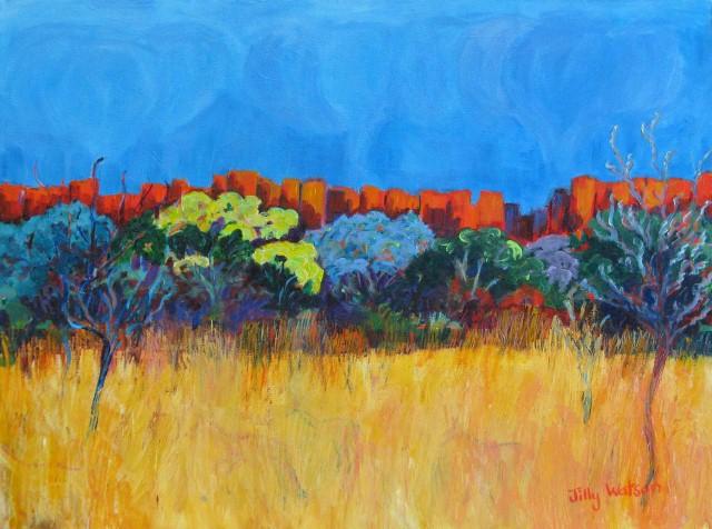 Яркие цвета. Jilly Watson