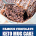 Famous Chocolate Keto Mug Cake #keto #mugcake